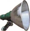 Flood Light CFL E29